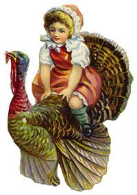 riding-turkey