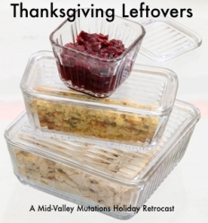 KRT FOOD STORY SLUGGED: THANKSGIVING-LEFTOVERS KRT PHOTOGRAPH BY JOHN MUTRUX/KANSAS CITY STAR (November 14) Clear glass containers help you keep an eye on turkey day leftovers while they're hanging out in the refrigerator. (lj) 2005